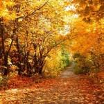 Литературно-музыкальный час «Осенние фантазии»