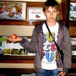 Познавательный досуг «Яблочный денёк»