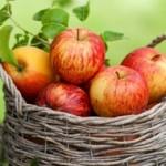 «Сила – в яблоке!»