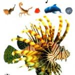 Библиотечный урок «Книга нам откроет дверь в мир растений и зверей»