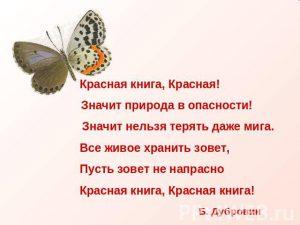18_красная_1