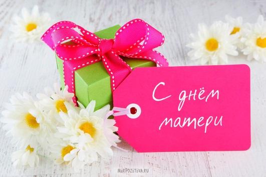 Праздничная встреча ко Дню Матери «Образ мамы любимой»