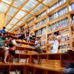 Библиотеки бывают разные