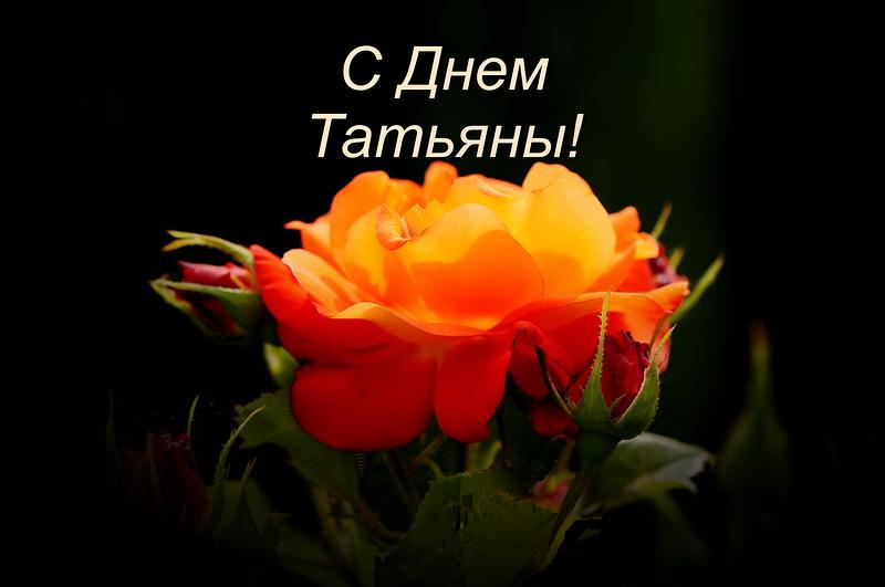 Литературно-развлекательная программа «И вновь январь, и снова день Татьяны…»