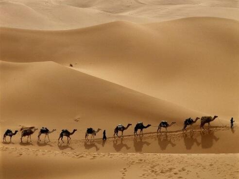 Виртуальное путешествие «Средняя Азия глазами туриста»