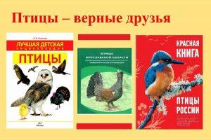 Урок доброты «Птицы – верные друзья»