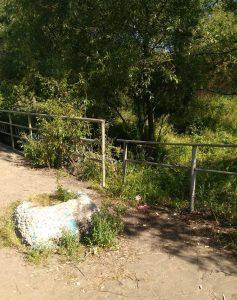 Cубботник вдоль русла реки Дунайки