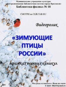 Познавательный видеоролик «Зимующие птицы России»