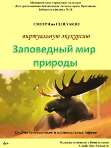 Виртуальная экскурсия «Заповедный мир природы»