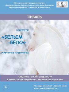 Видеоурок «Белым-бело» о животных-альбиносах
