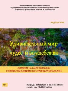 Видеоролик «Удивительный мир чудес и волшебства»