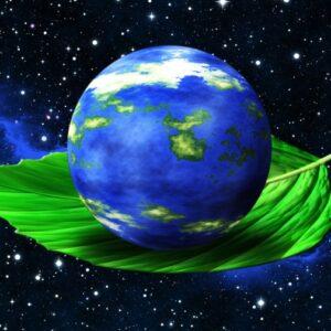 «Береги свой дом, свою планету», выставка-экскурсия